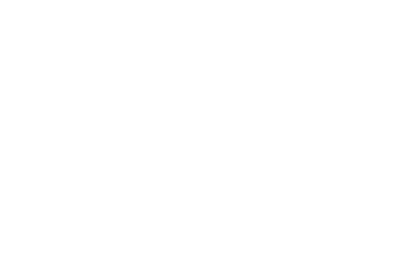 Banner Logo 10